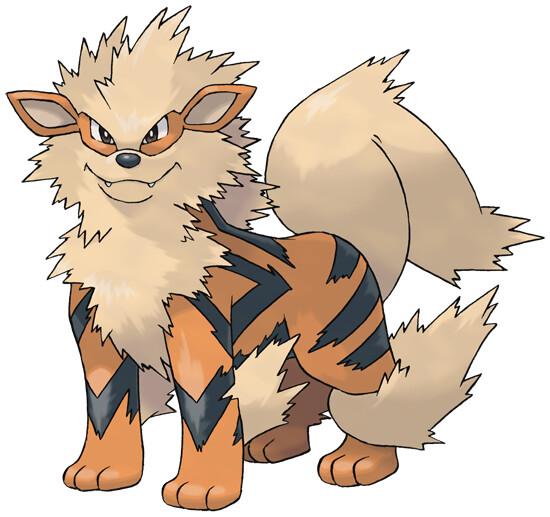 Arcanine Pokédex Stats Moves Evolution Locations Pokémon Database
