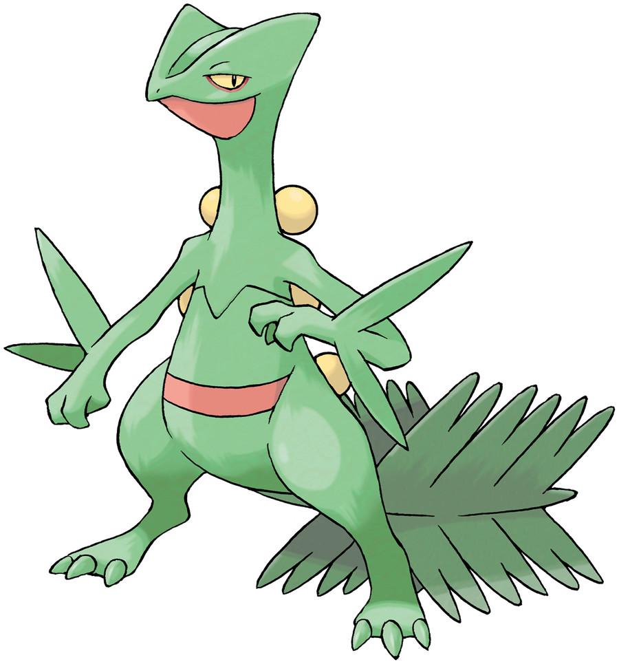 Sceptile | Pokémon Wiki | FANDOM powered by Wikia