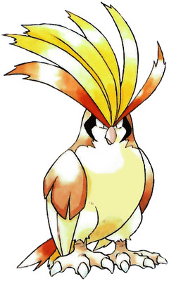 Pidgeot Early Sugimori artwork - Red/Blue US