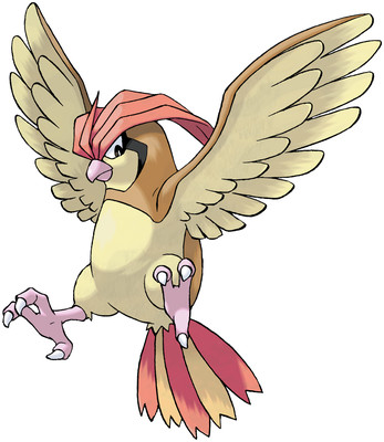 Pidgeotto artwork by Ken Sugimori