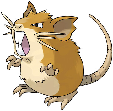 Raticate artwork by Ken Sugimori