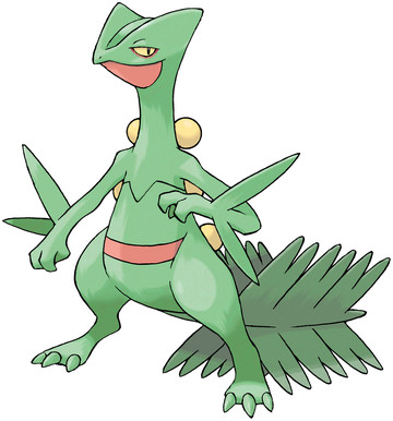 Sceptile artwork by Ken Sugimori