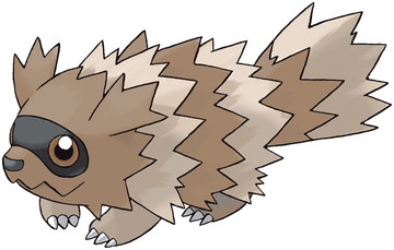 Zigzagoon artwork by Ken Sugimori