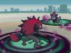 Zoroark and Zorua battle, Pokémon Black & White