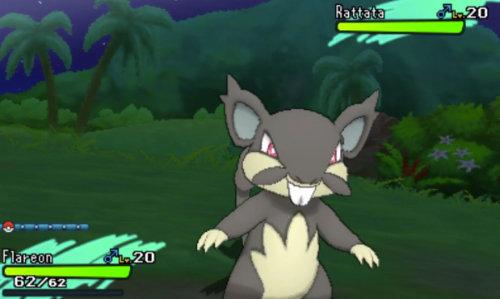 Alolan Rattata & new Z-Moves revealed in Nintendo 3DS Direct ...