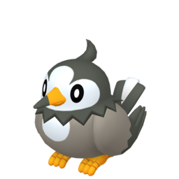 [Image: starly-f.png]
