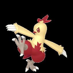 Combusken sprites gallery | Pokémon Database