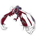 Yveltal sprites gallery   Pokémon Database