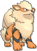 Arcanine  sprite from Ultra Sun & Ultra Moon